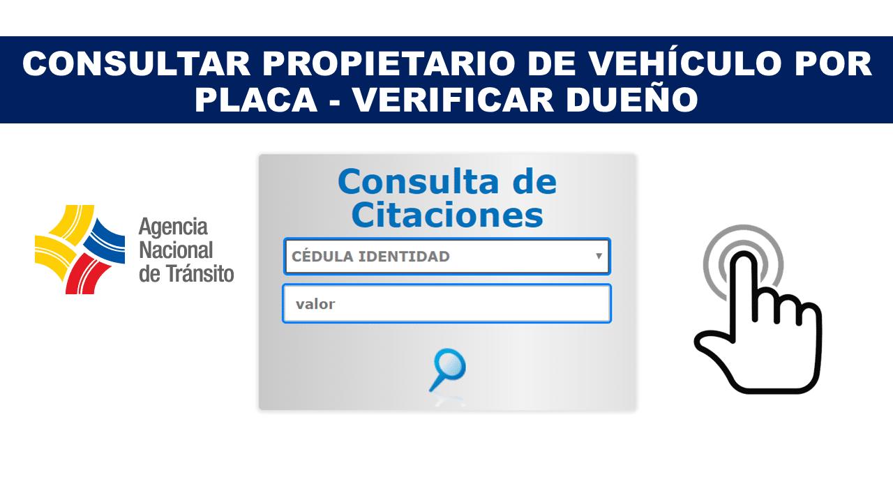 buscar propietario de vehículo por placa