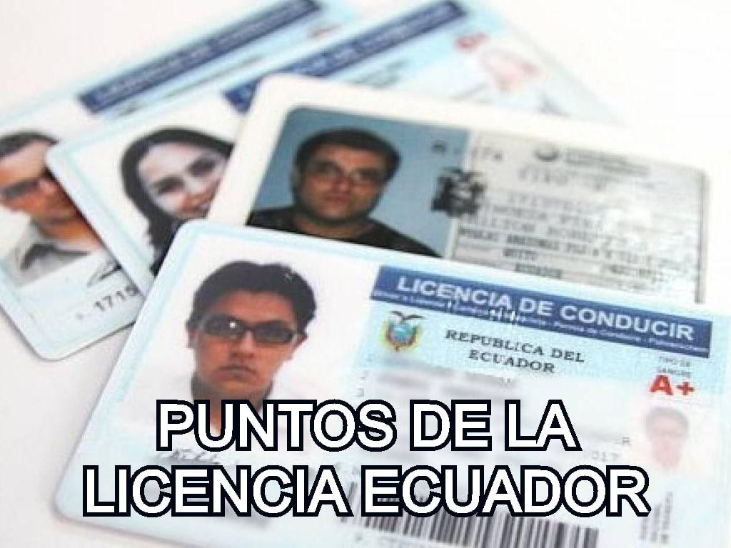 puntos de la licencia