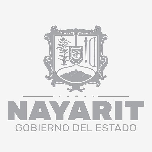 Repube-nayarit-consulta-beneficios-y-mucho-más